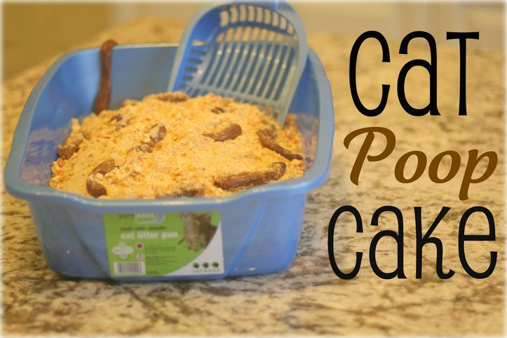 April Fool's Day Edition: Cat Poop Cake {Tasty Tuesday}