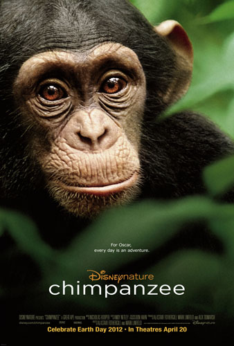 Disney's New Hit! Chimpanzee- A Must See! {review}