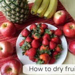 How to Dry Fruit aka. The Perfect Sweet Snack