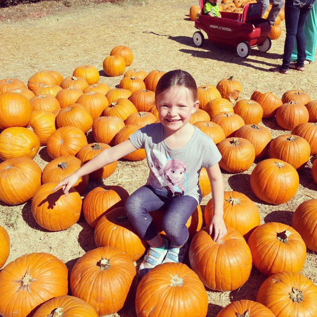 I wasn't sure we were going to make it this year but we did! #PumpkinPatch #BatesNutFarm