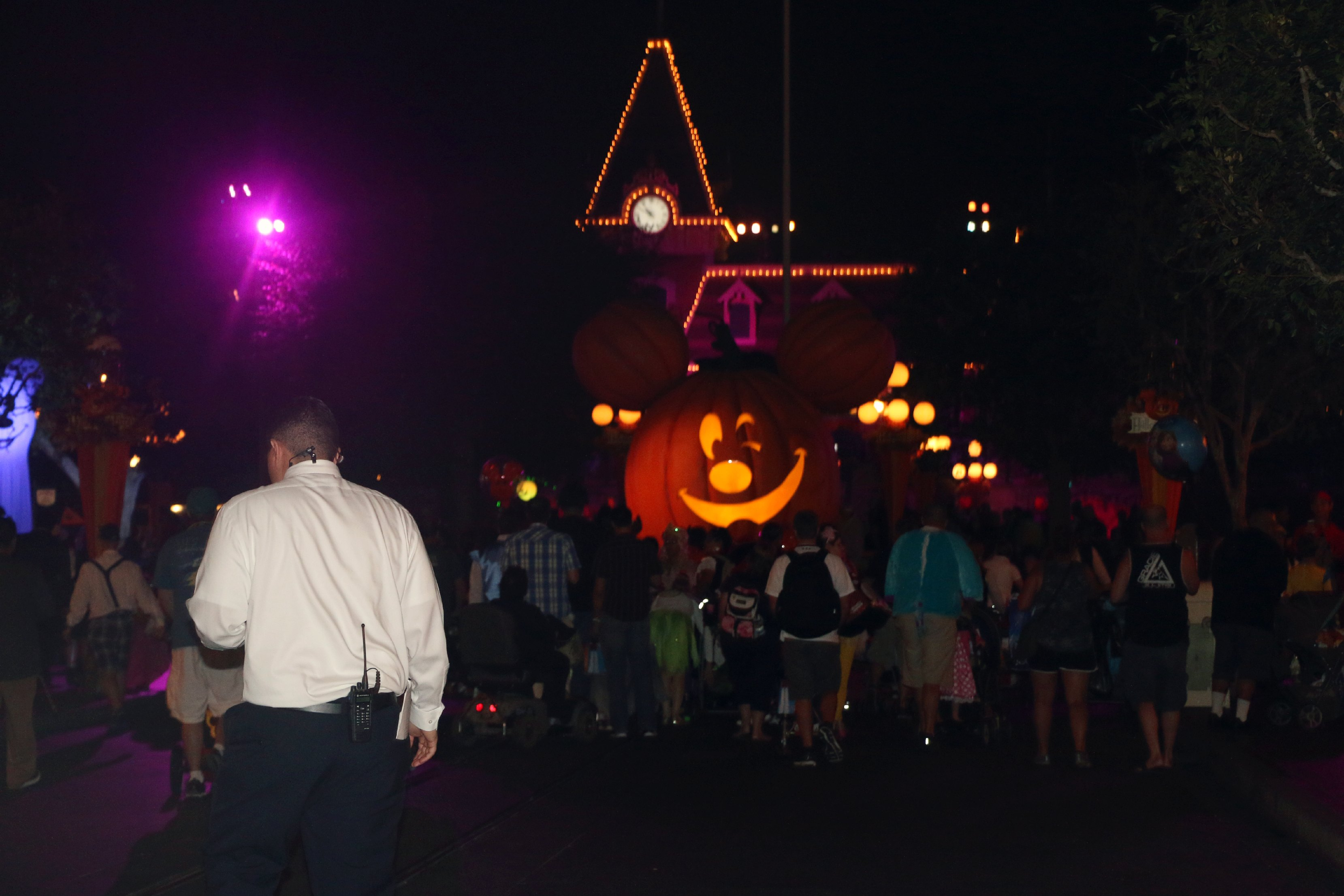 pumpkins Disneyland