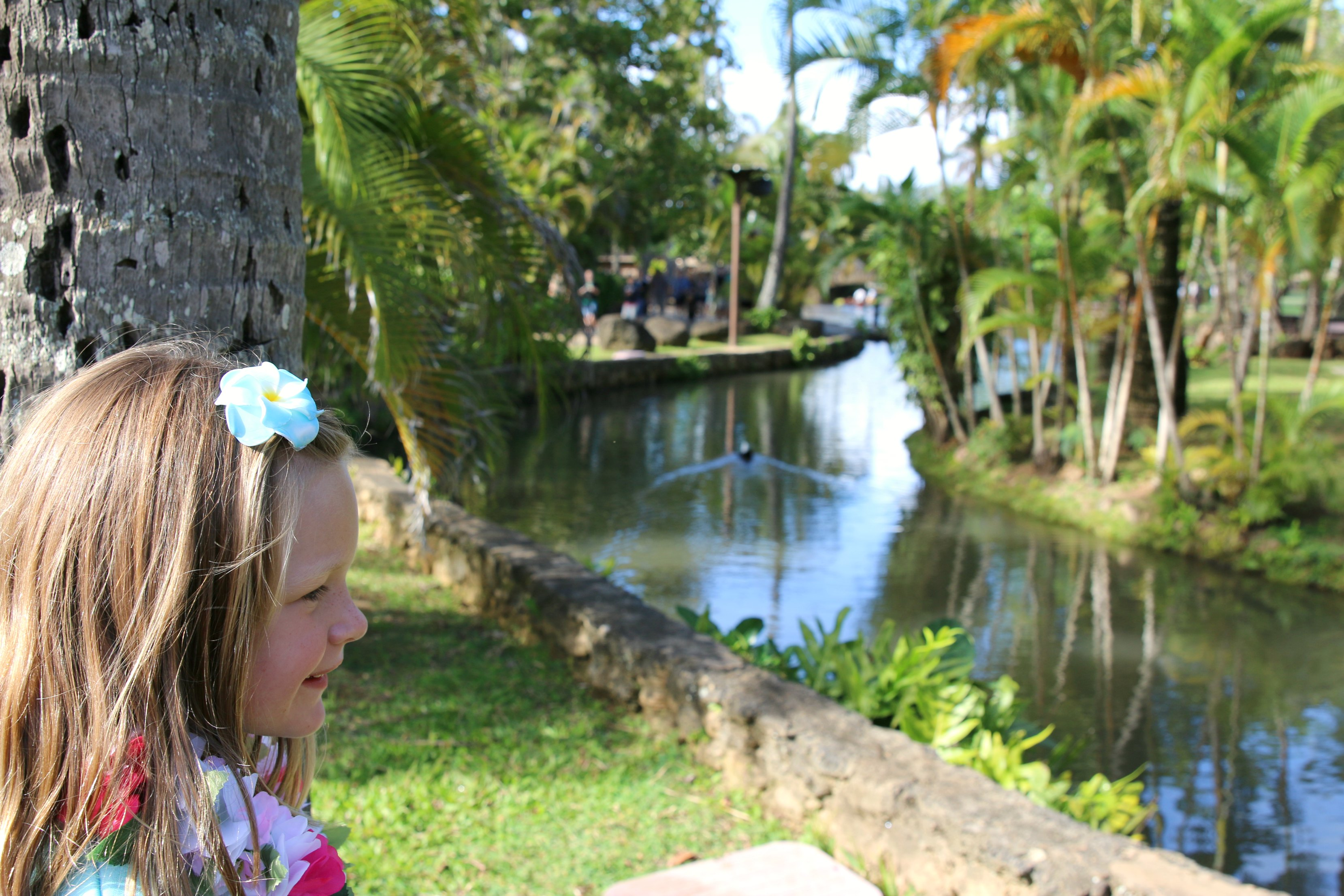 what to do at the Polynesian cultural center