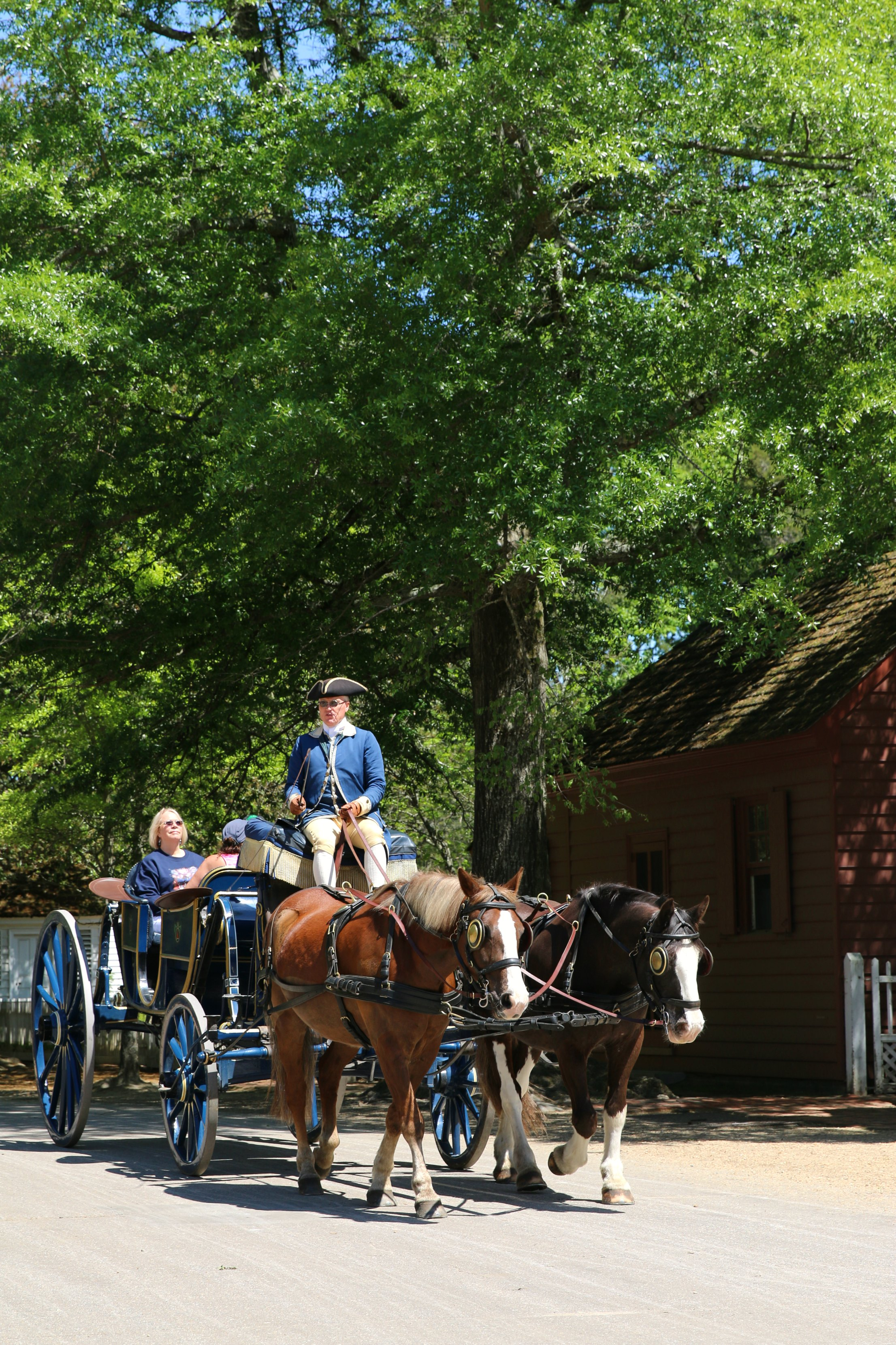 carriage ride williamsburg