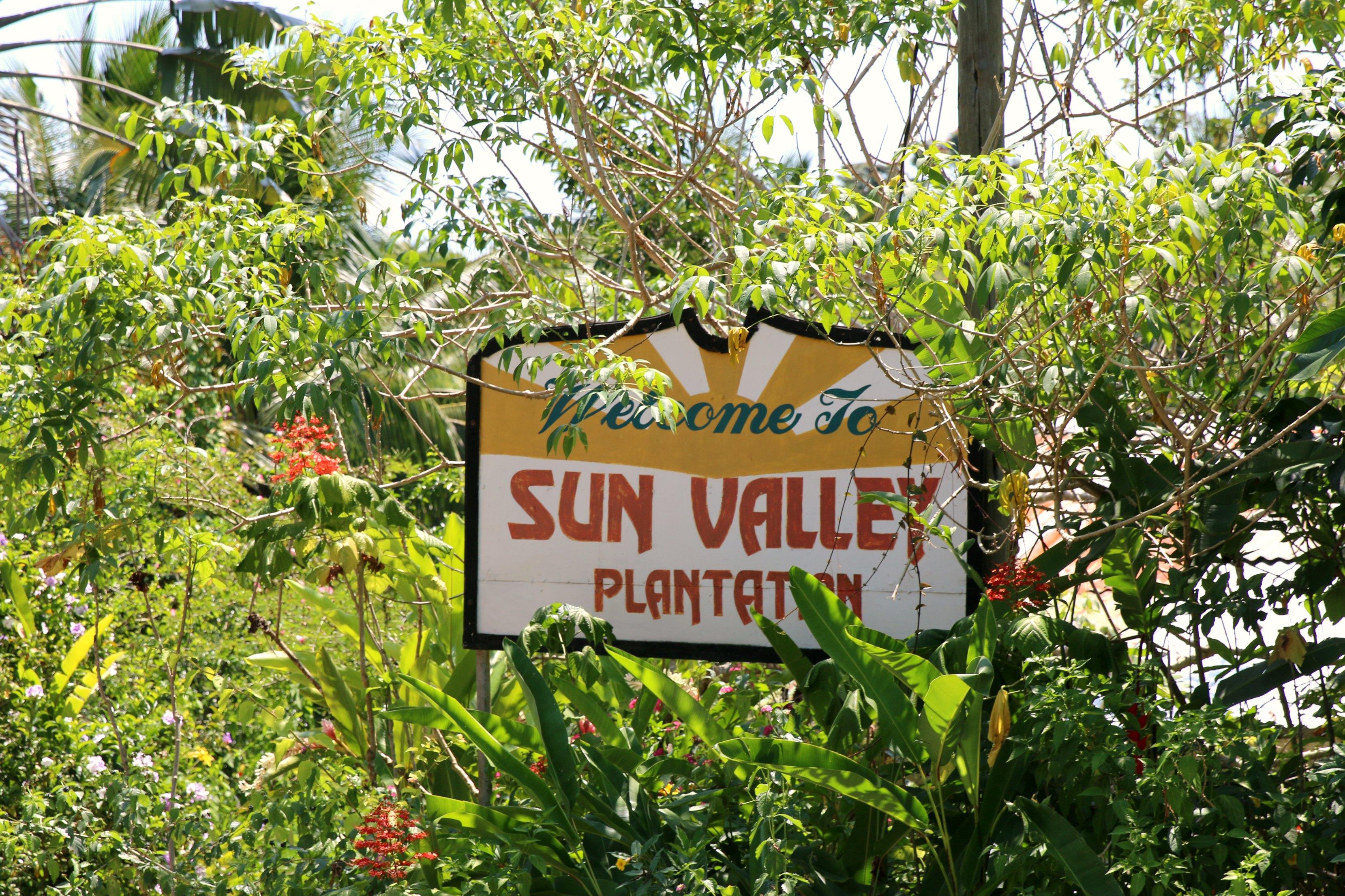 sun valley plantation