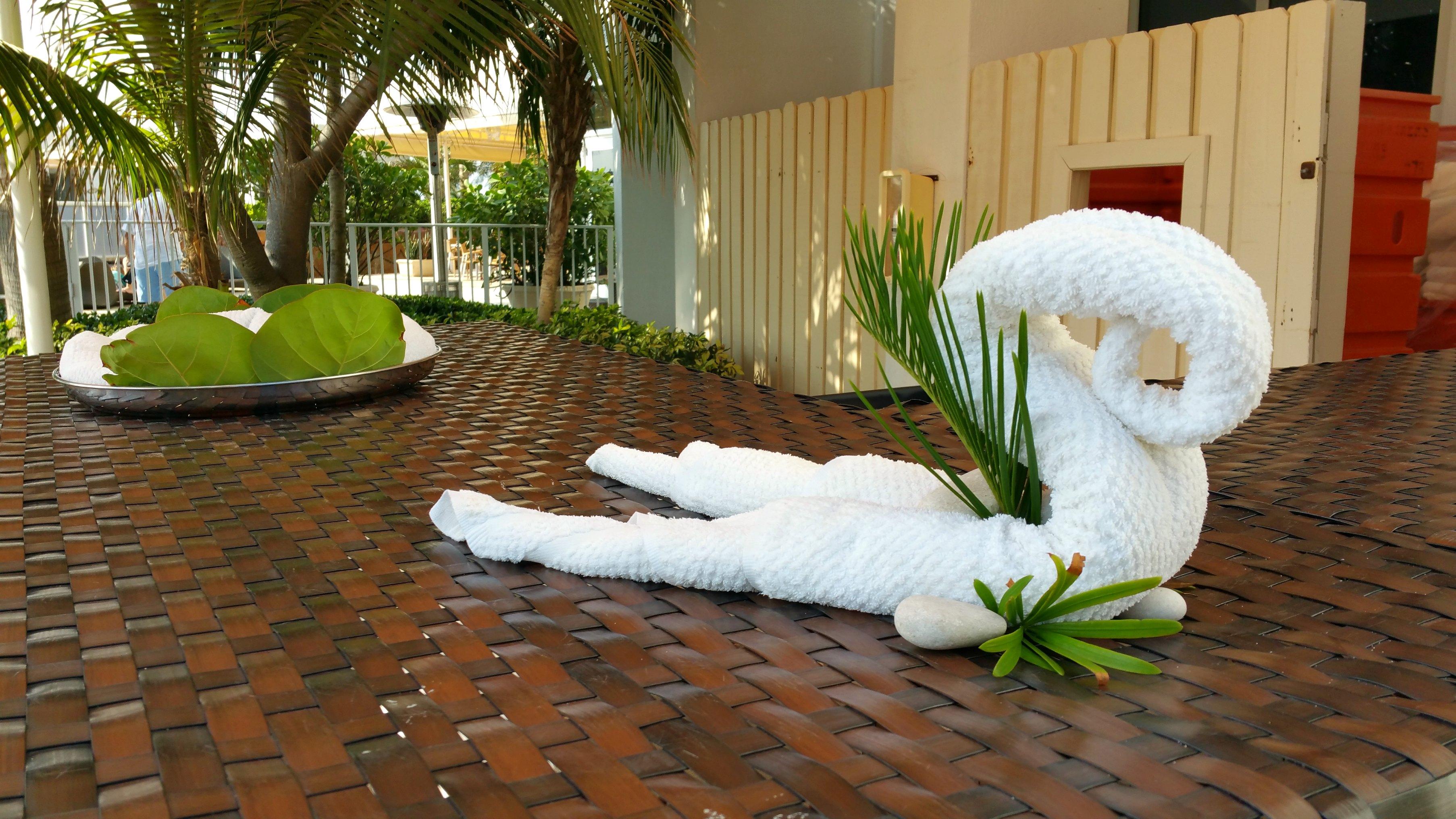 Miami Family Friendly Hotels