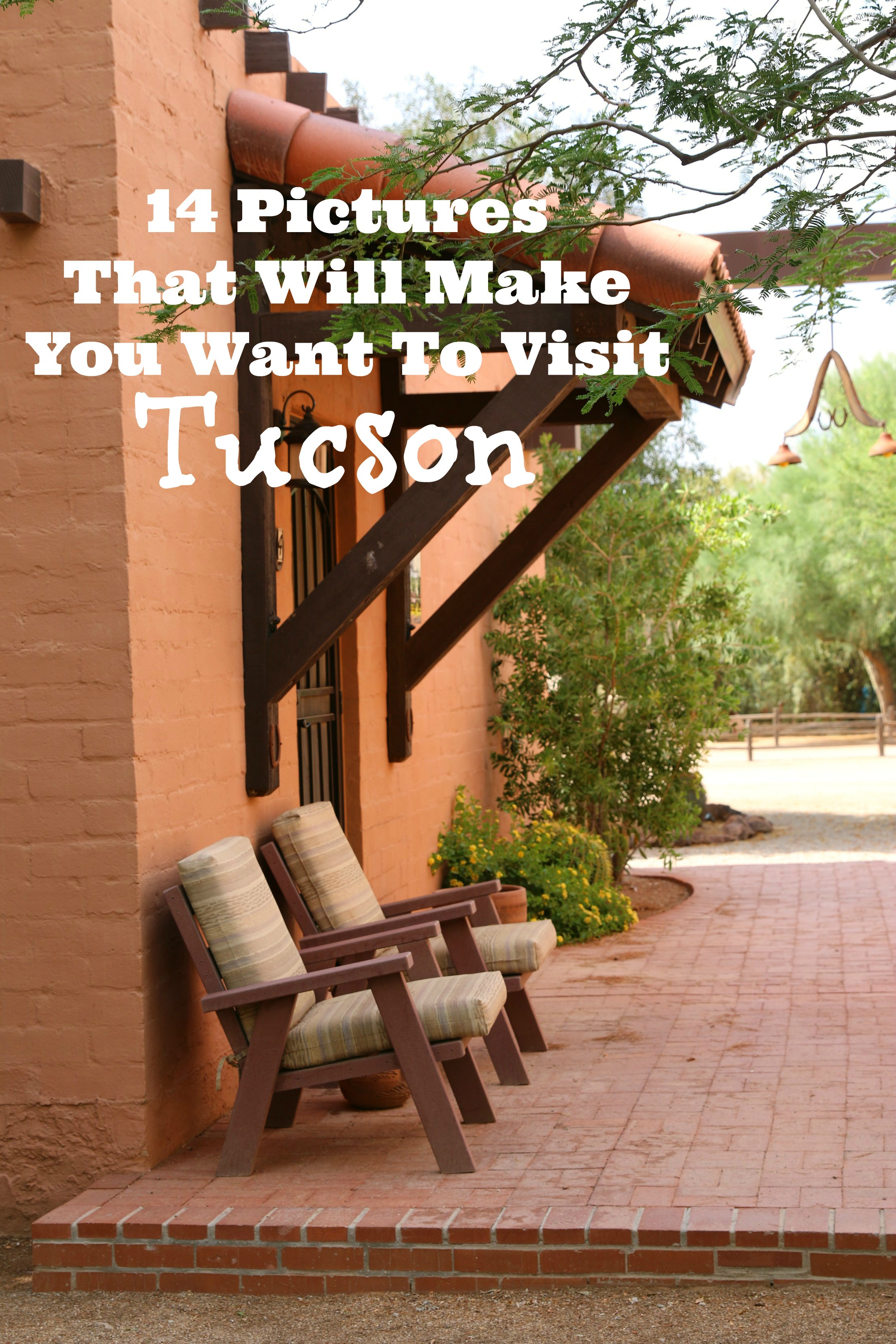 14 Pictures That Will Make You Want To Visit Tucson Arizona