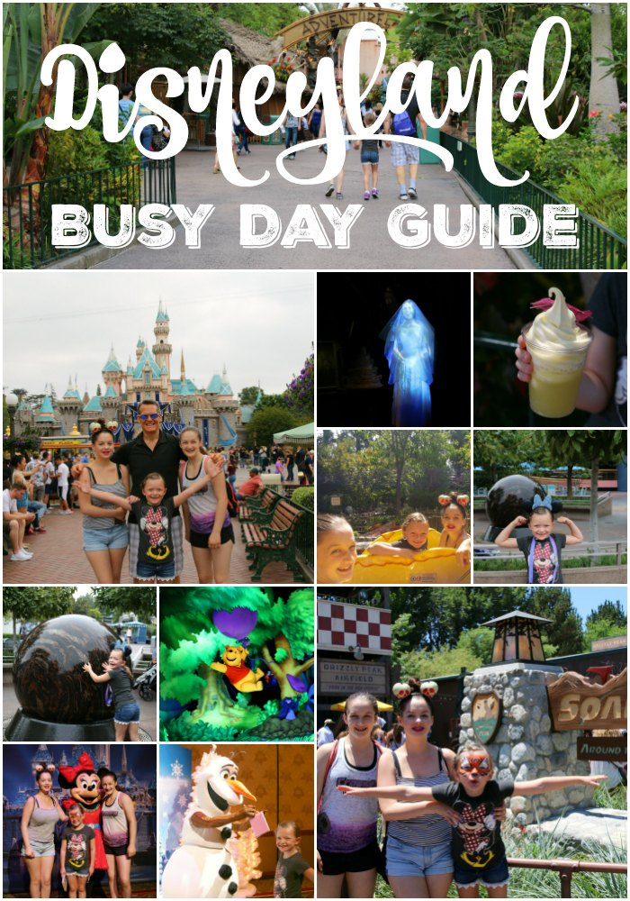 Disneyland Busy Day Guide