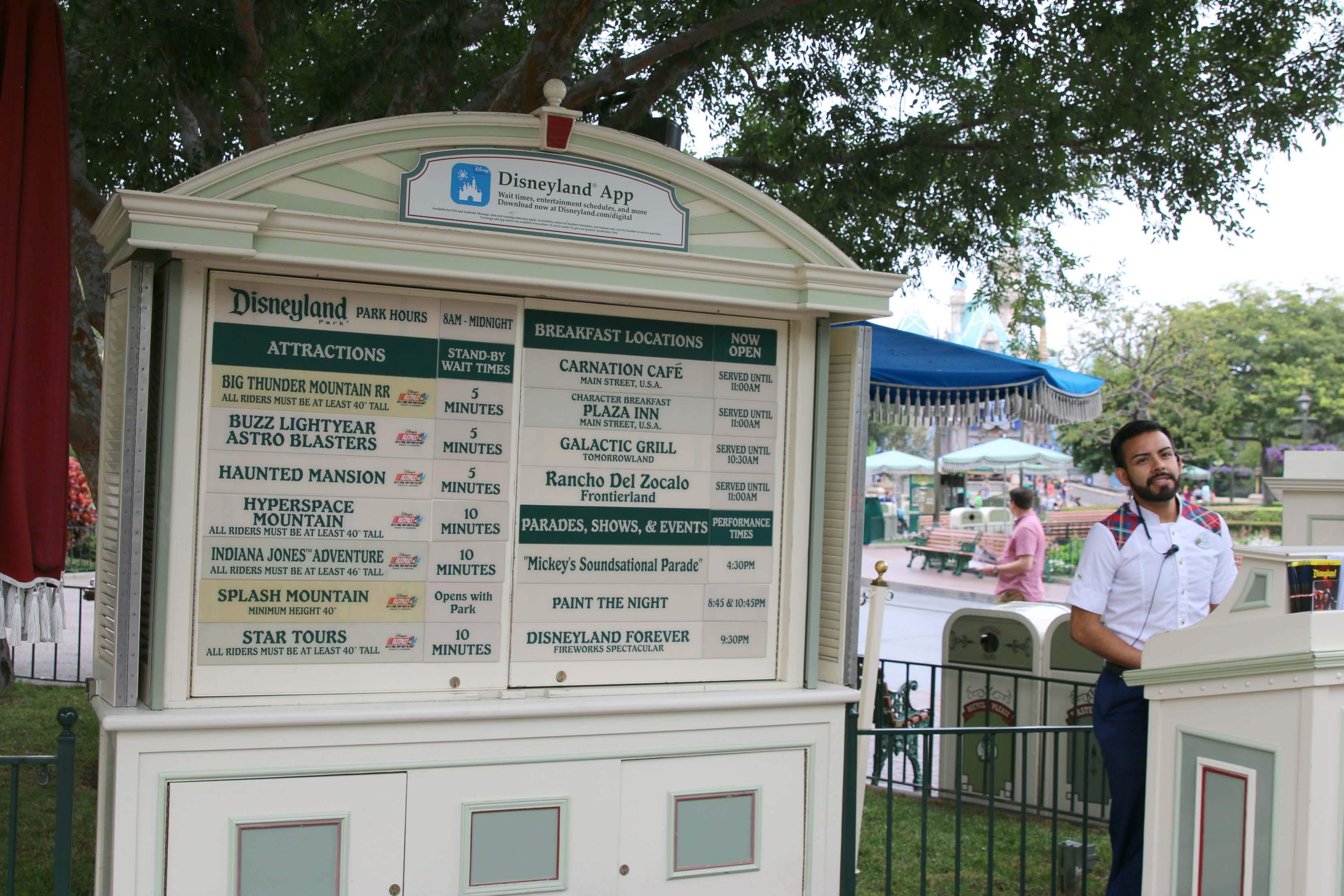 Disneyland wait times