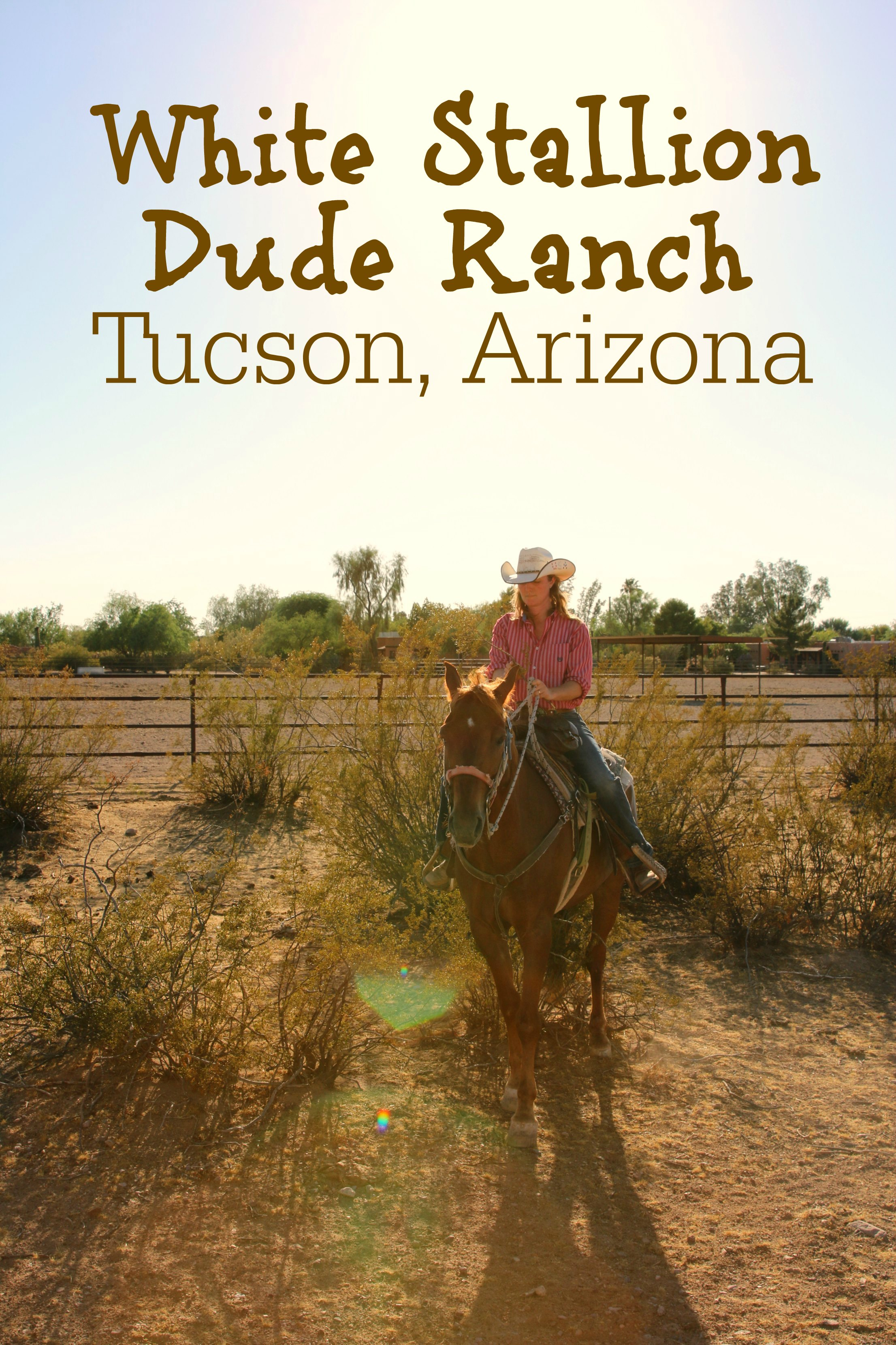 White Stallion Dude Ranch Review Tucson Arizona
