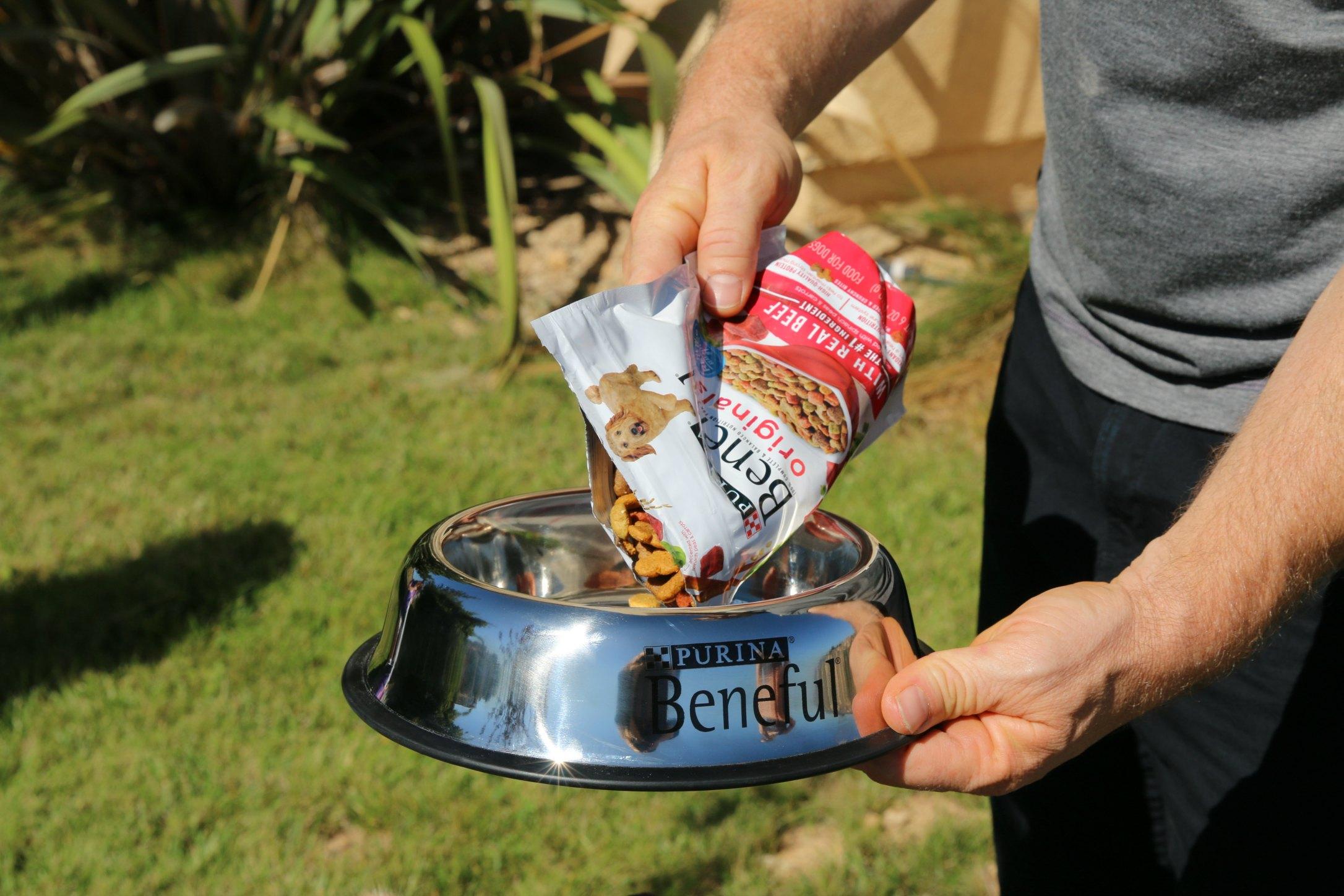new dog food