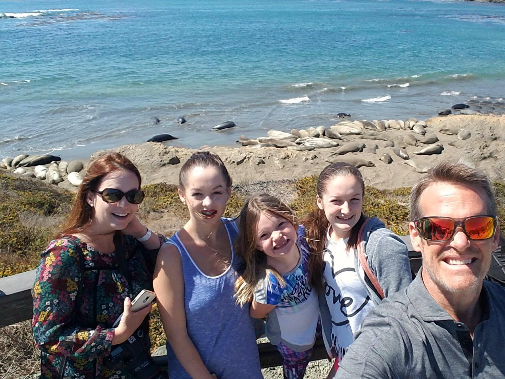 elephant-seals-san-simeon-with-kids