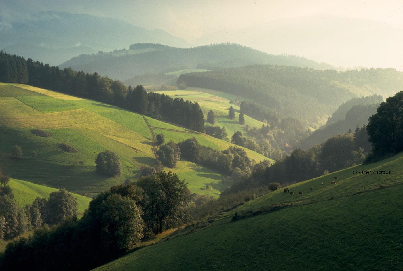 germany_black-forest_rainer-kiedrowski