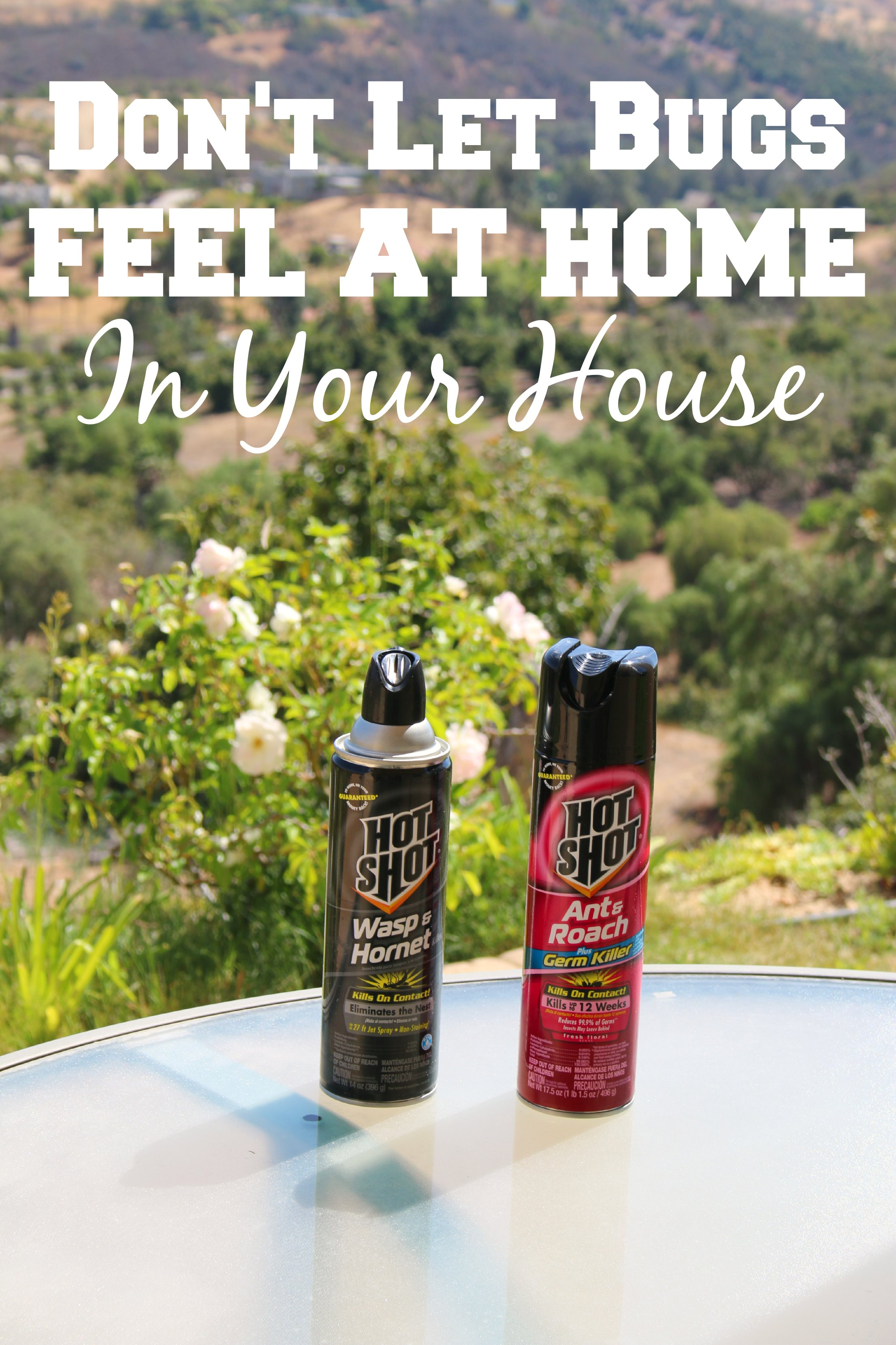 hot shot insecticide