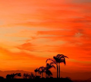 For just a few fleeting moments the sky looked like it was on fire in San Diego last night...