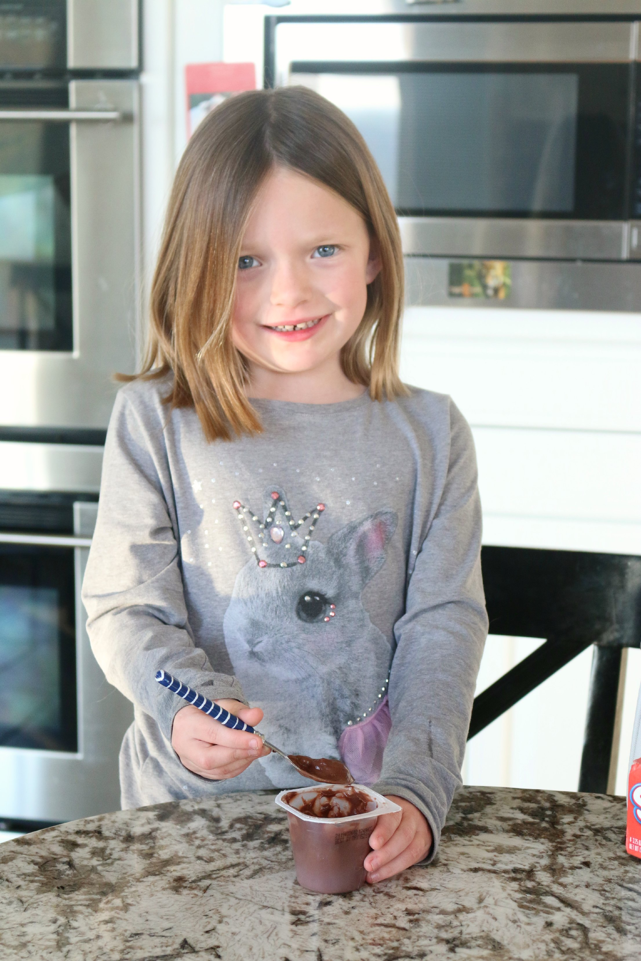chocolate pudding for lunch boxes