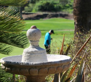 pala mesa resort golf