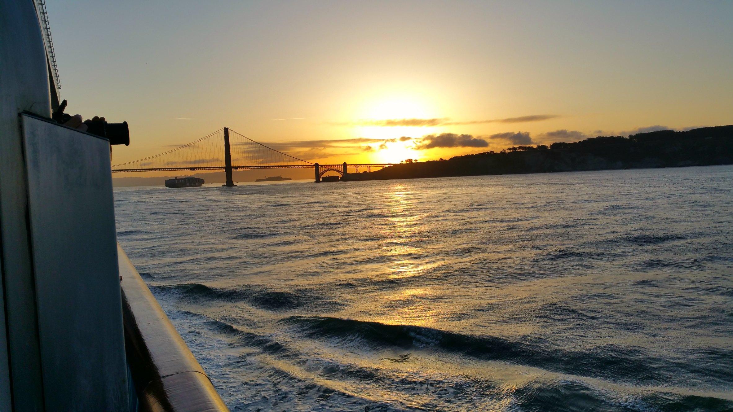 san francisco bay cruise ship