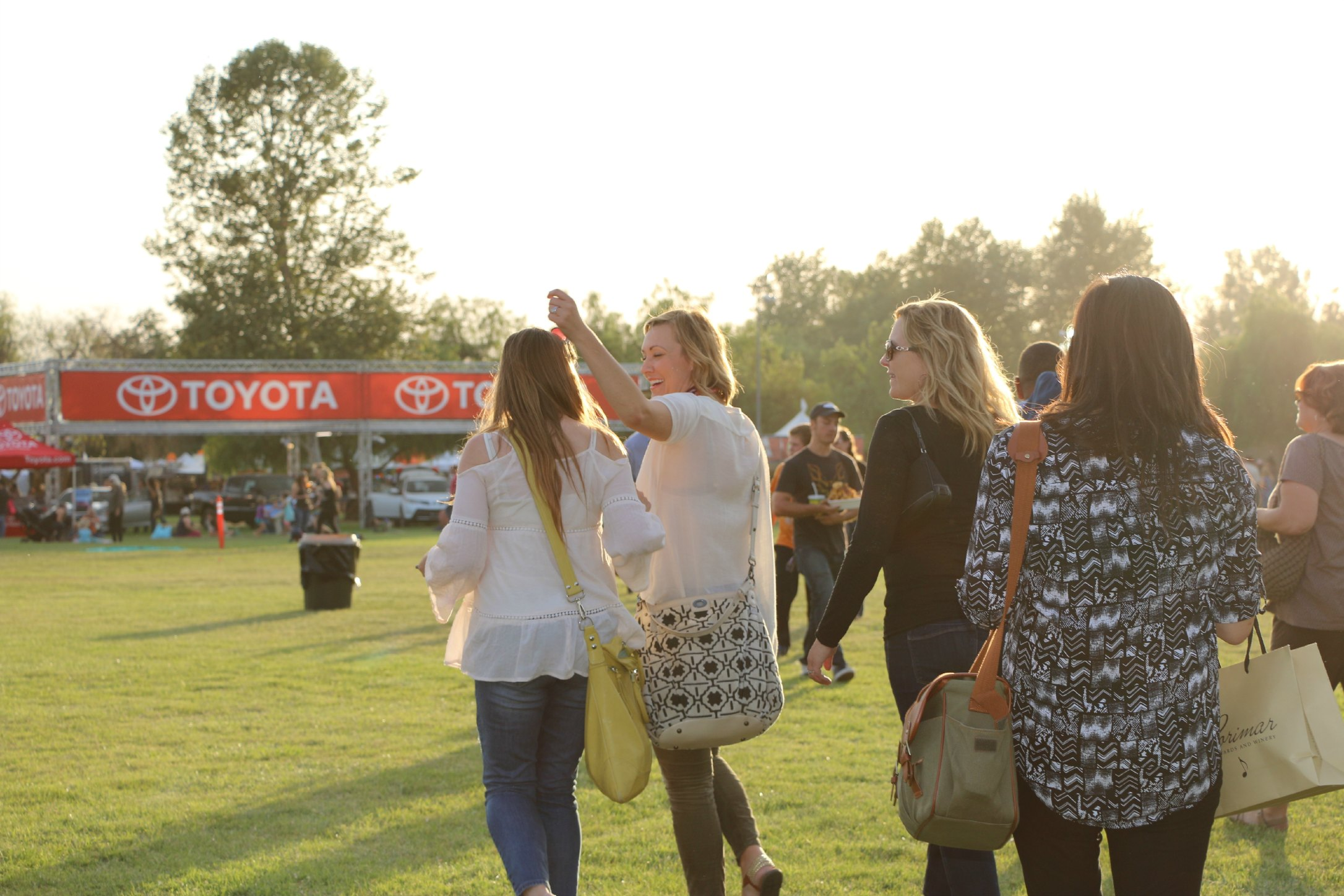 temecula wine balloon festival