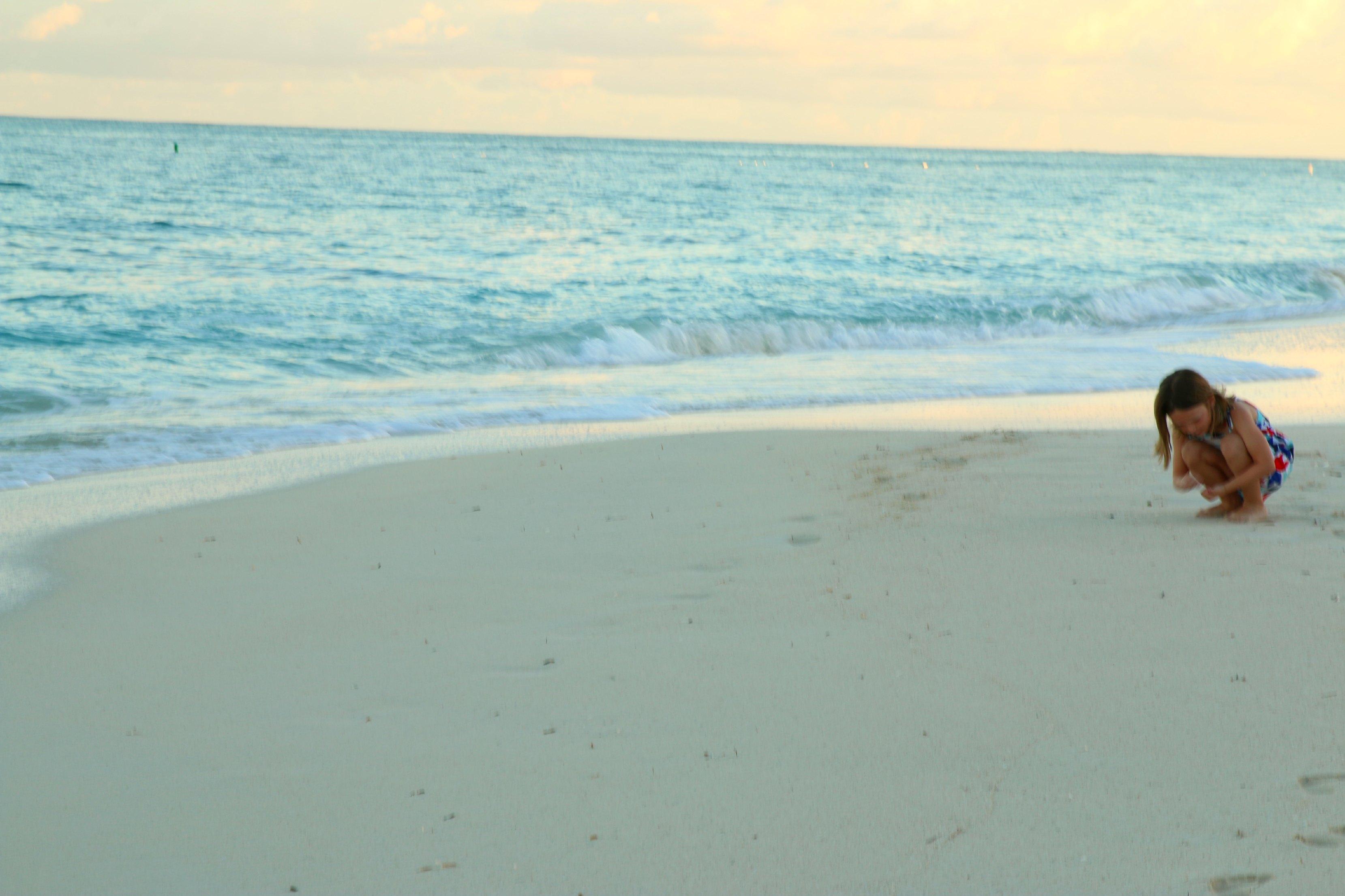 emmy ocean