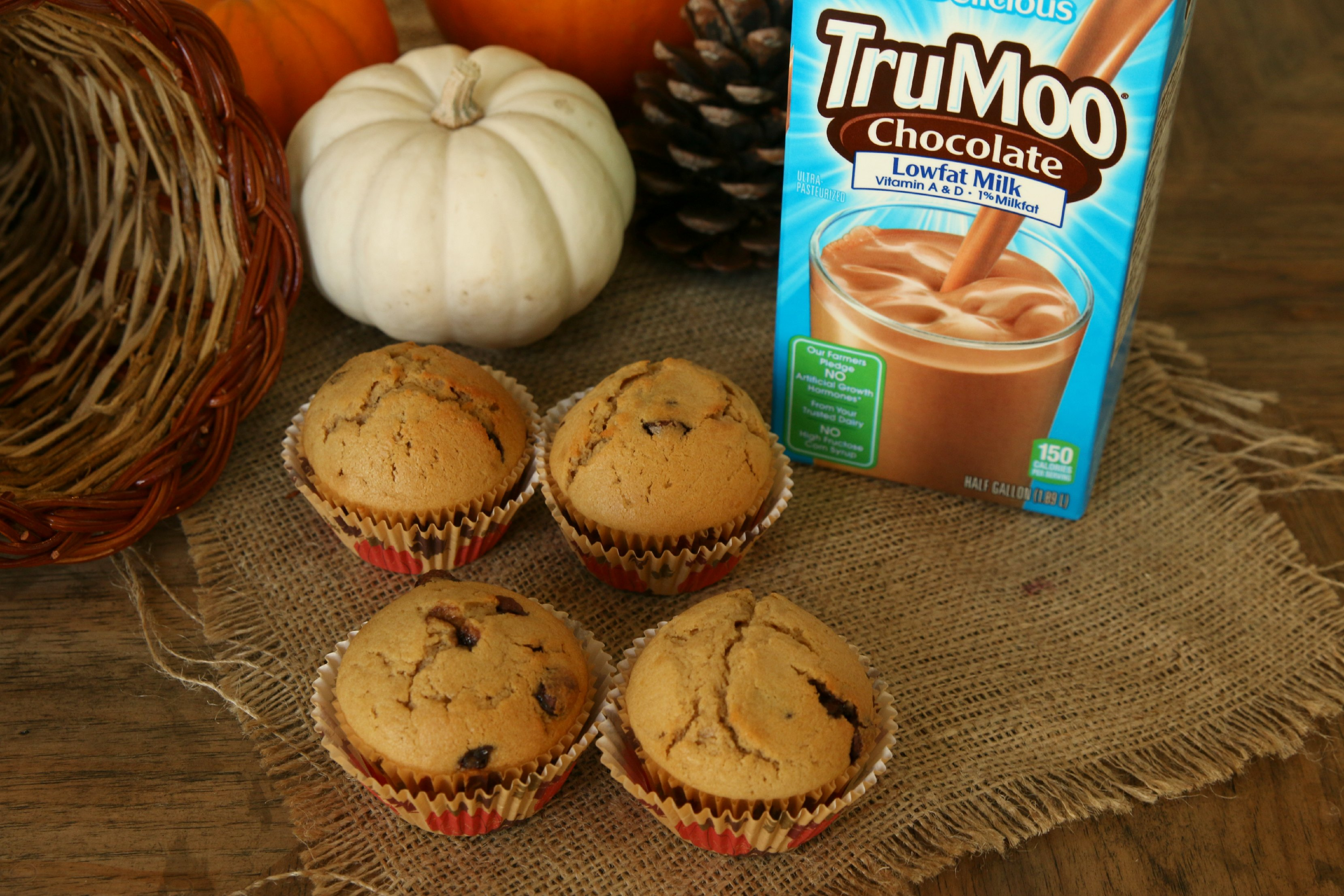 trumoo chocolate muffins