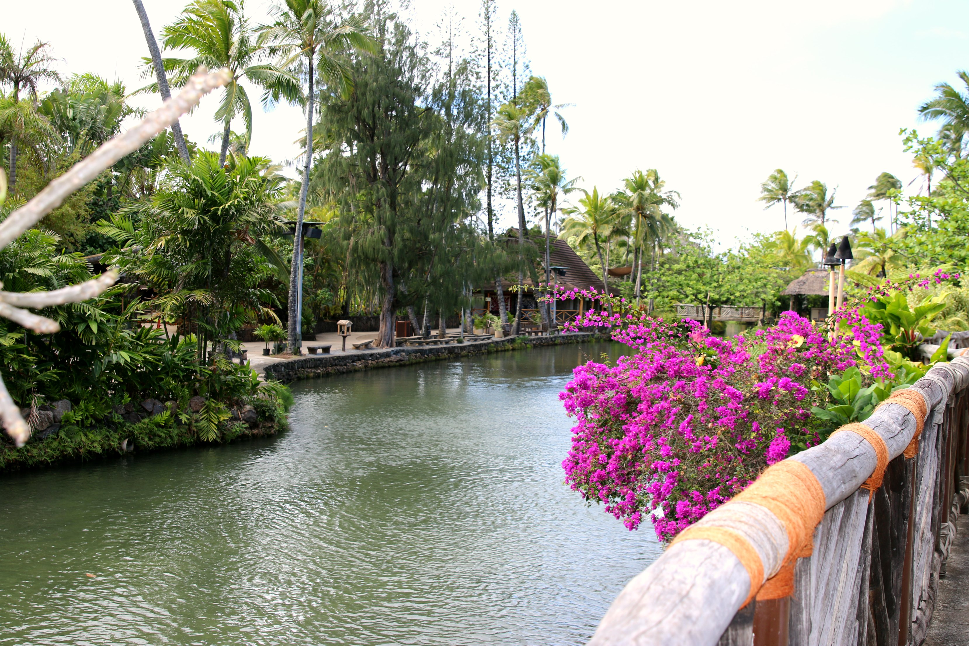 Polynesian cultural center review
