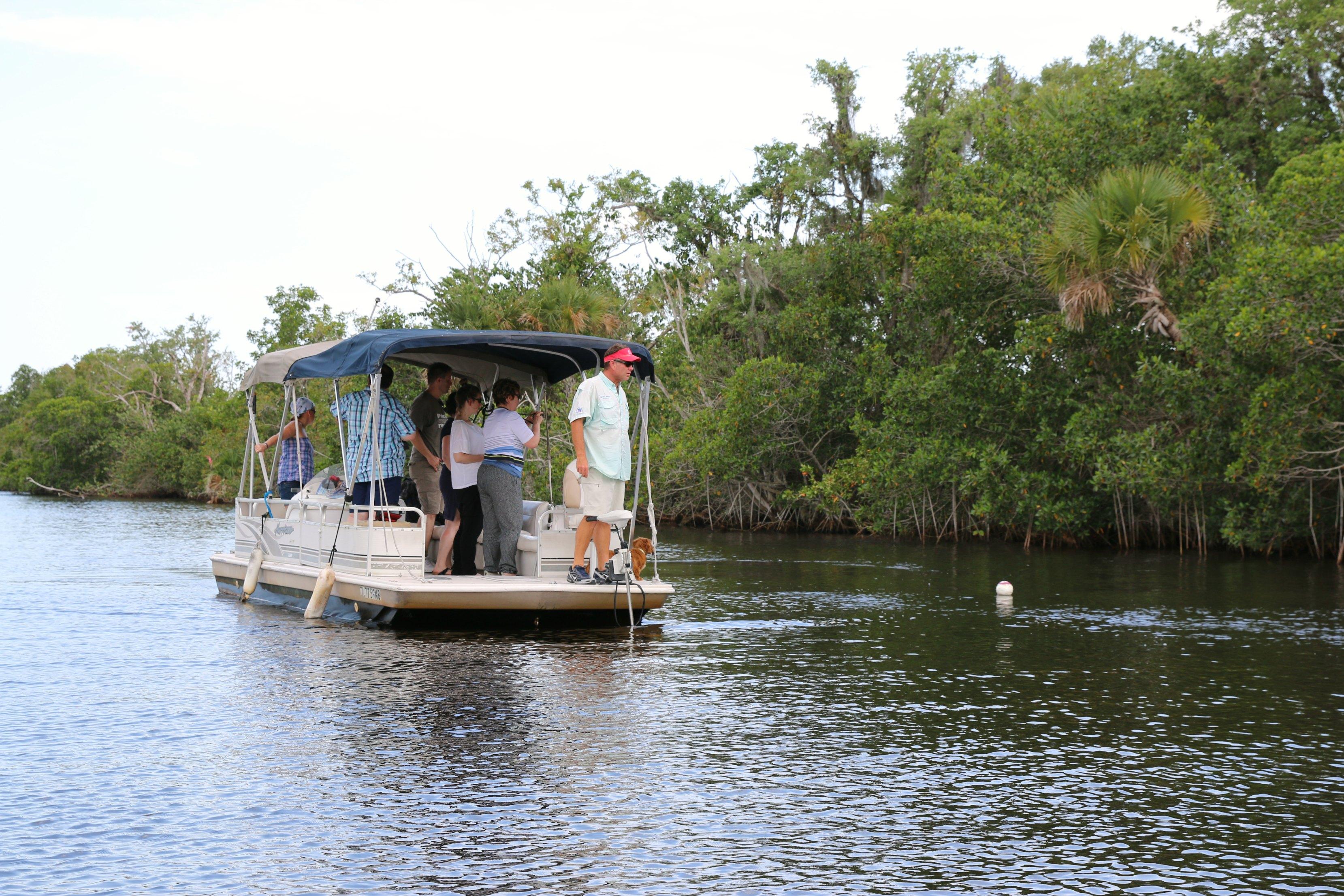 manatee boat tour