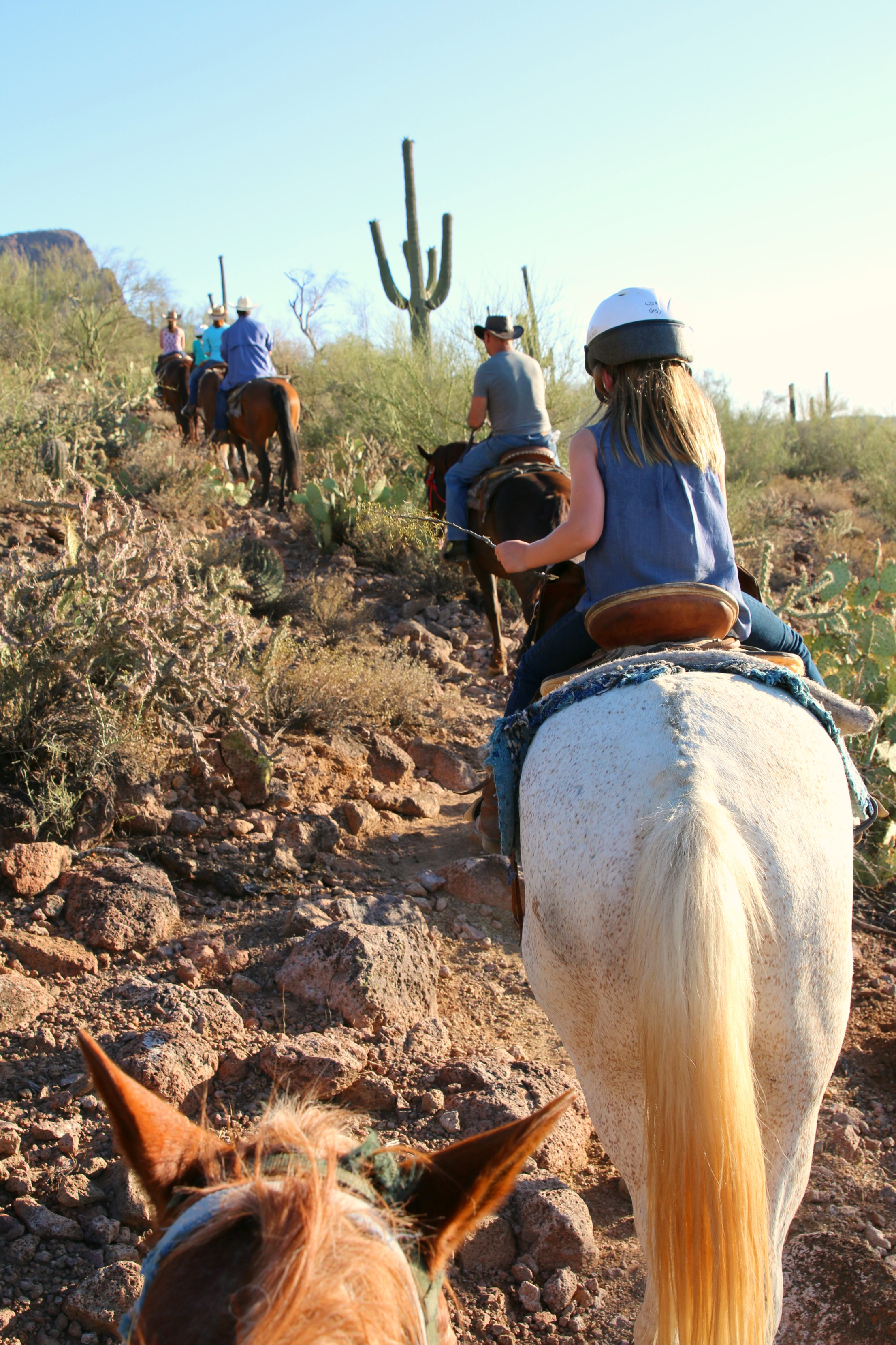 desert horseback riding