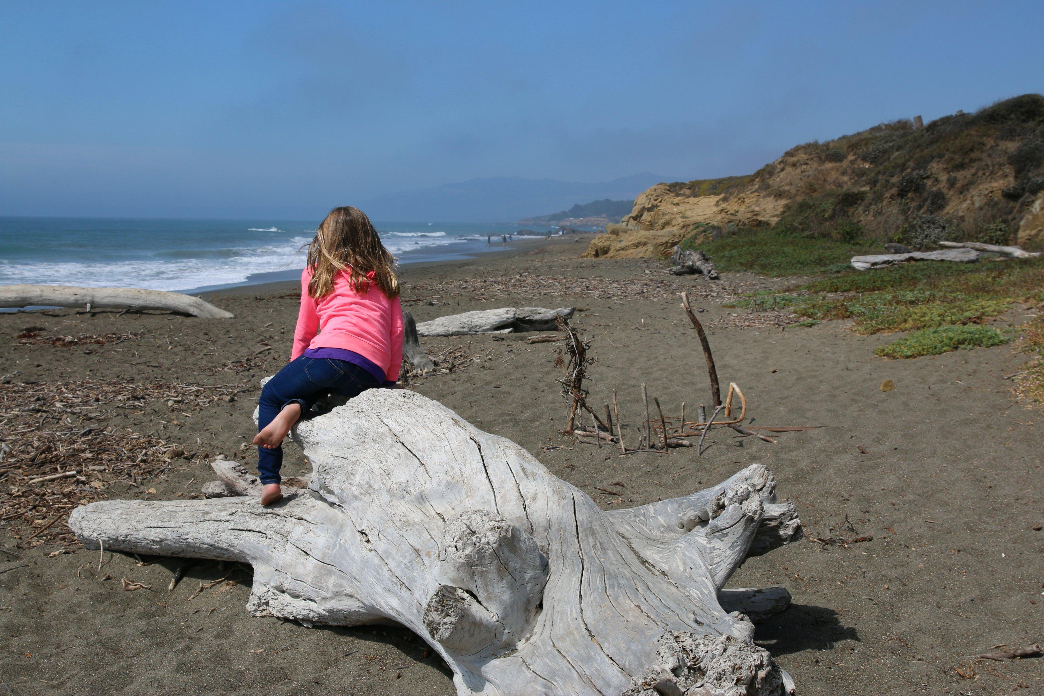 cambria-family-beaches