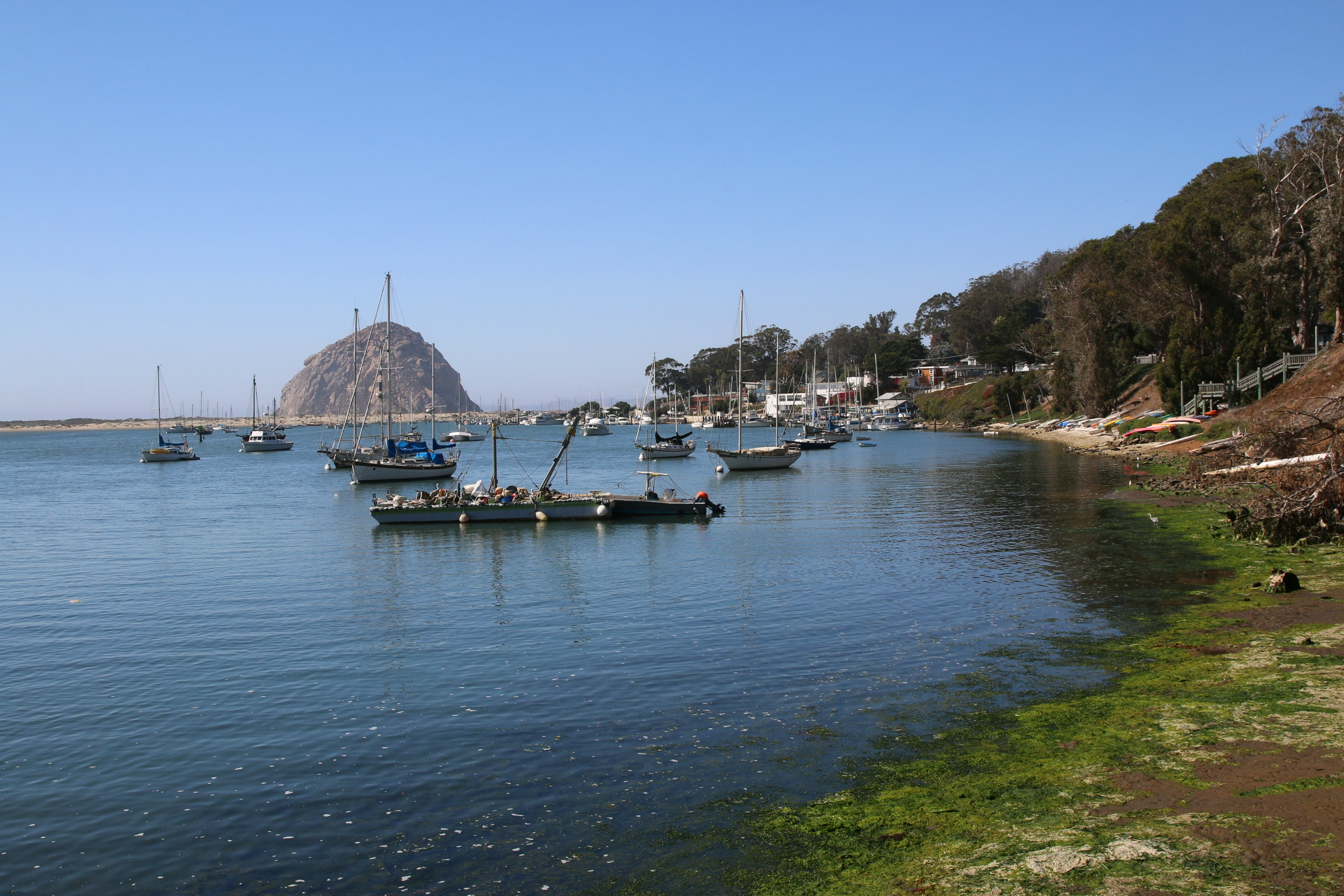 family-activities-in-morro-bay