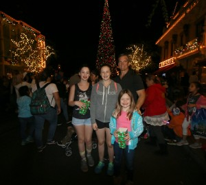 2016-christmas-time-at-disneyland-tips