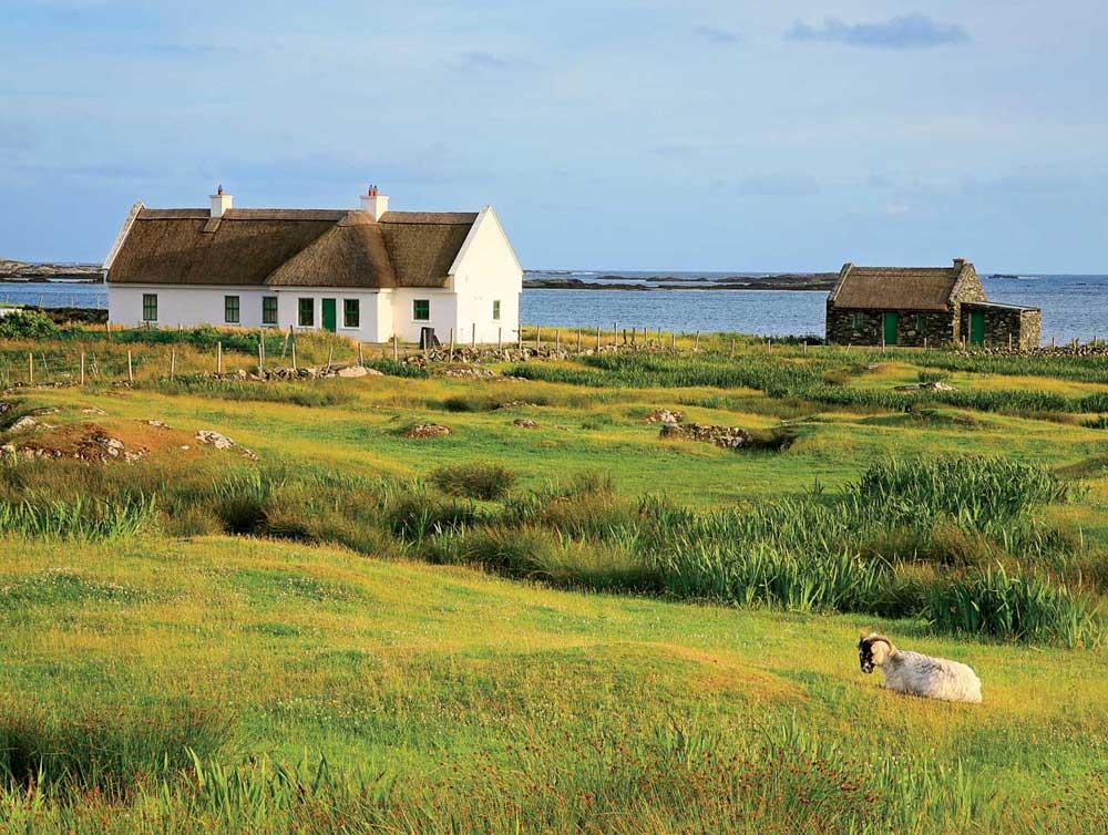 Lovely-Life_Vantage-Ireland-3