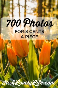 Buy 700 Beautiful Stock Photo For Only 8 Cents A Piece!