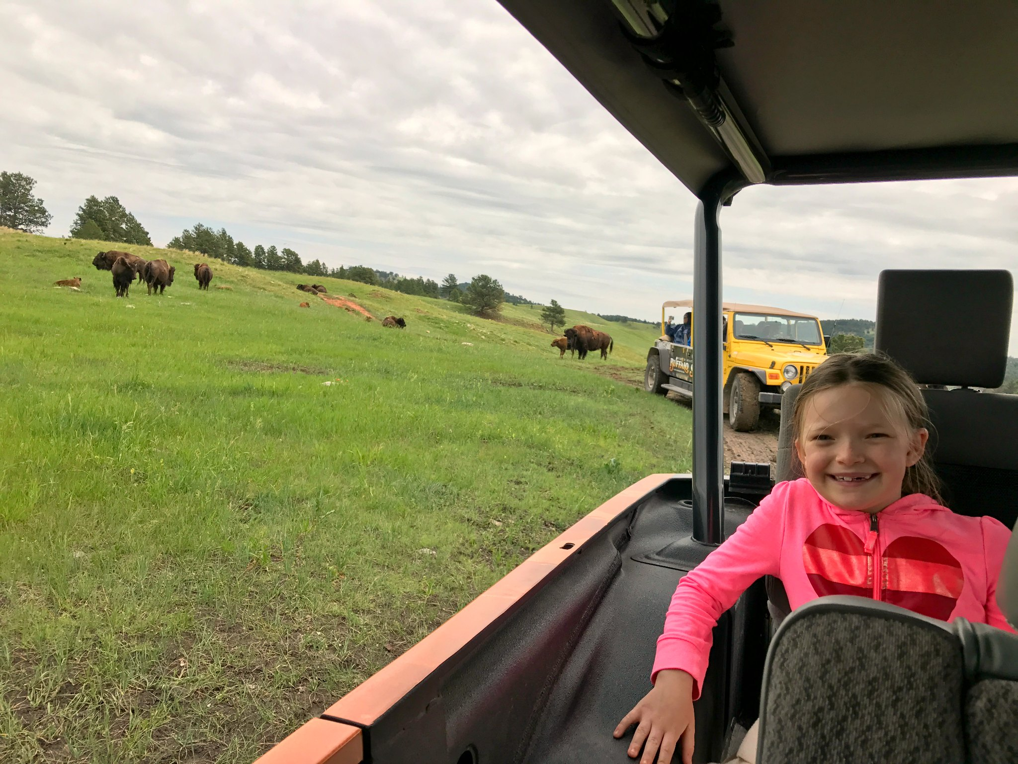 jeep tour review custer state park