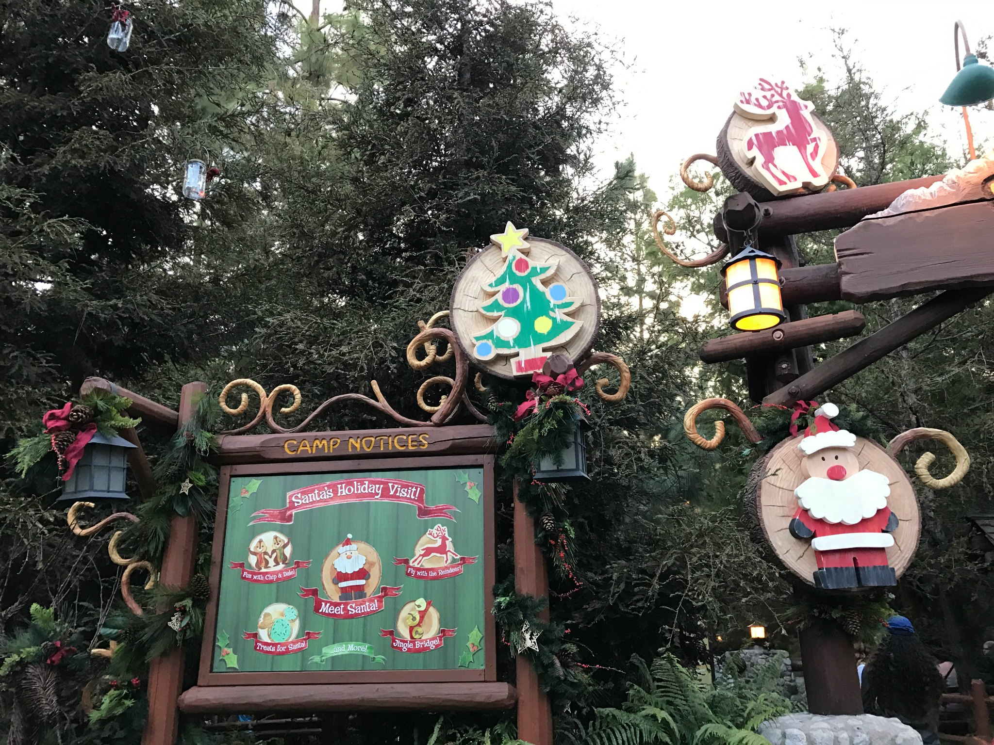 save - Disneyland Christmas Decorations