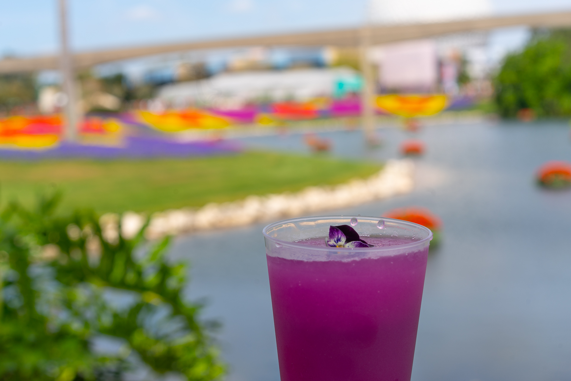 A drink at Epcot's Flower and Garden Festival at Walt Disney World