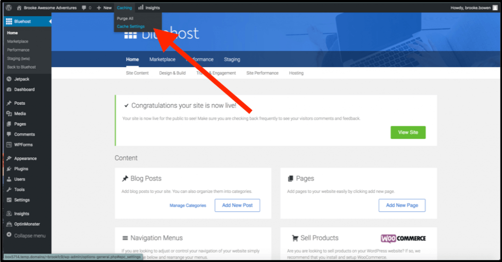 How to Launch Your Bluehost WordPress Site